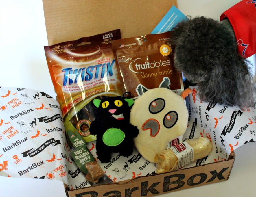 You Have Mail! It's Bark Box. Simply LaKita shares her experience with receiving her first Bark Box for her dog, Shakespeare. simplylakita.com #barkbox #dog