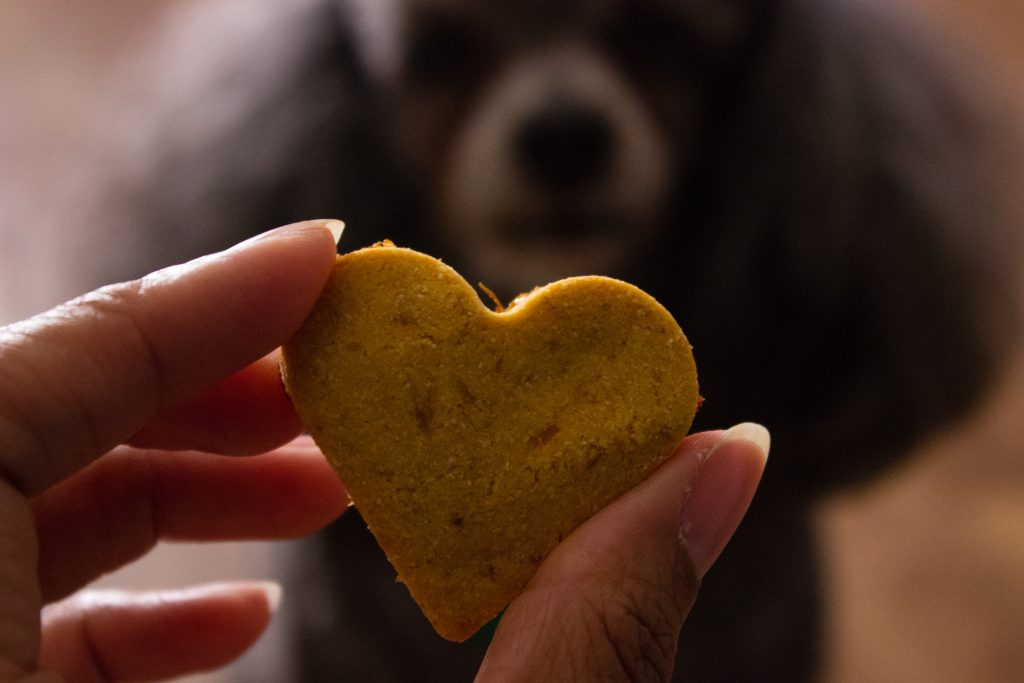 These DIY Sweet Potato Dog Treats are so easy to make in one bowl with 5 simple ingredients. They are sure to be a favorite with your furry pal. simplylakita.com #dogtreats #homemade #diy