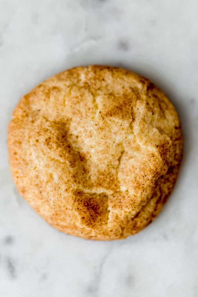 single baked snickerdoodle cookie