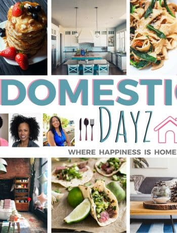 domestic dayz link party simplylakita.com #linkup #linkparty