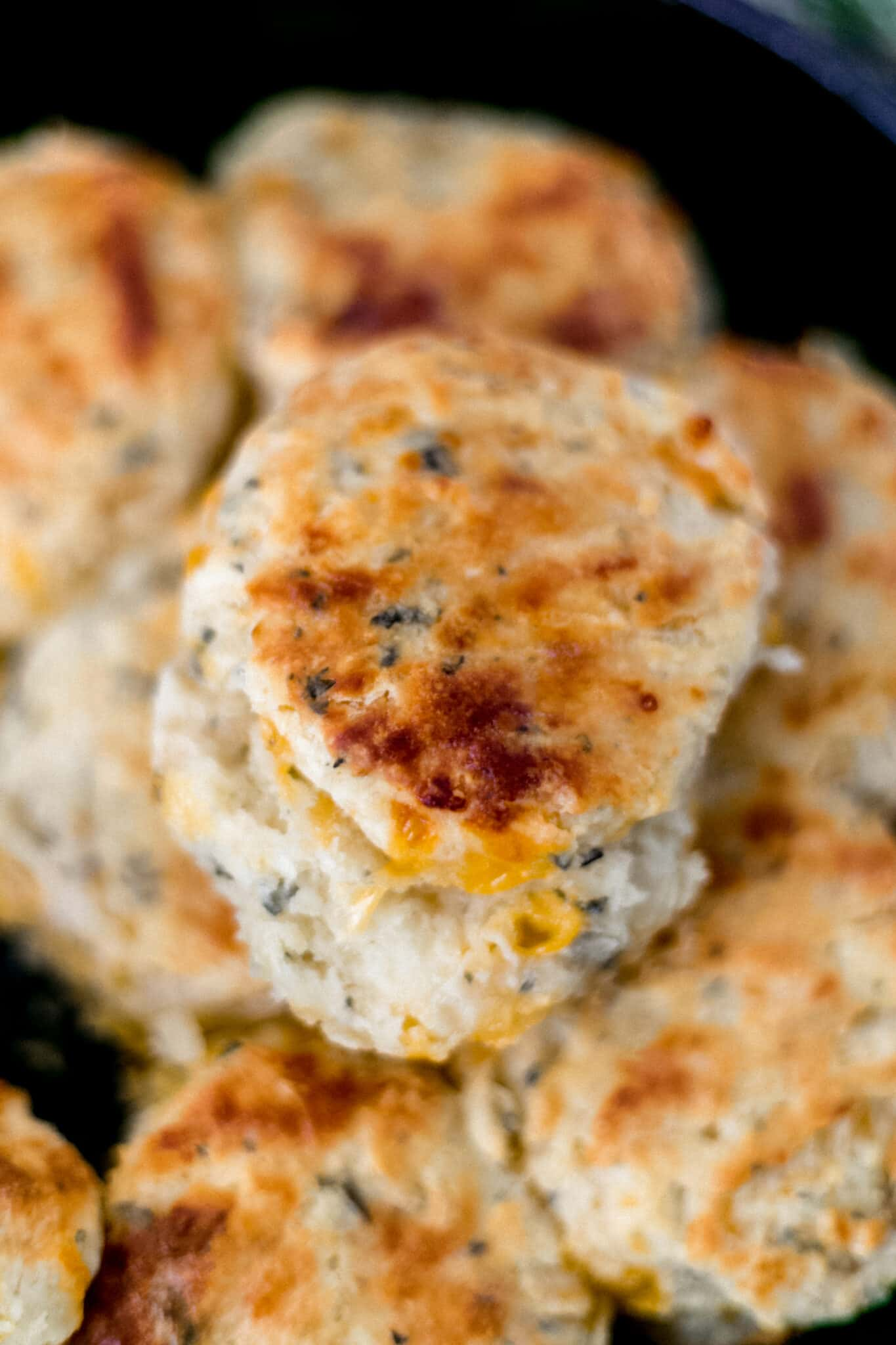 close up view cooked cheddar herb biscuits in cast iron skillet